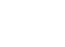 SWITCHY DUB | artiste ElectroDub Reggae | official website Logo